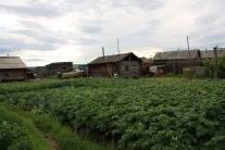 Тутончанский огород