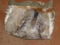 Женская эвенкийская сумочка из шкуры оленя