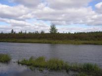 Речка Суринда