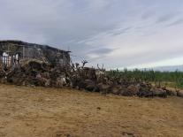 Олени, отдыхающие у дымокура. Озеро Подвальное (1)