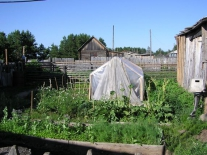 Сельское хозяйство Келлога